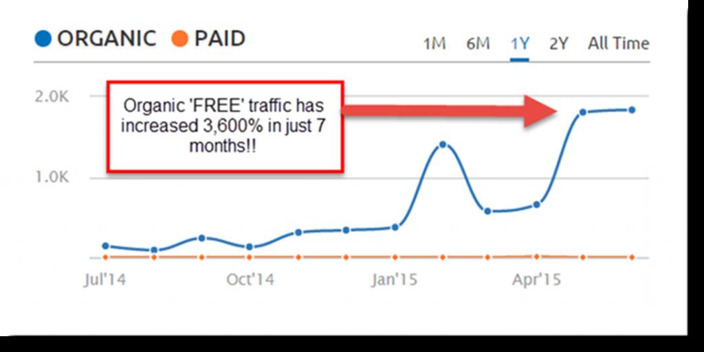 website seo traffic