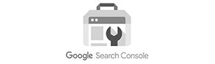 Google Search Console Ads