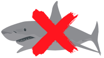 Digital Marketing Agency Australia shark free 12 » July 23, 2021